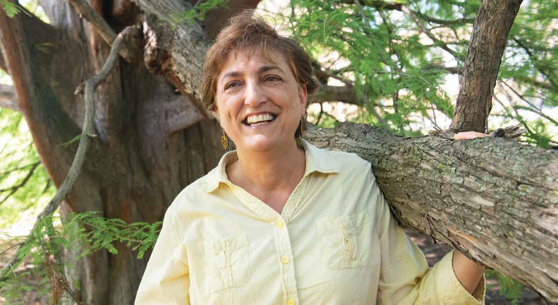 Lisa Pennisi